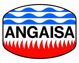 angaisa_logo_grande.jpg